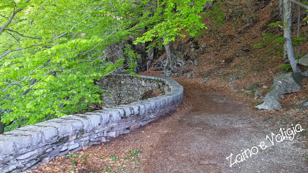 sentiero monte cucco