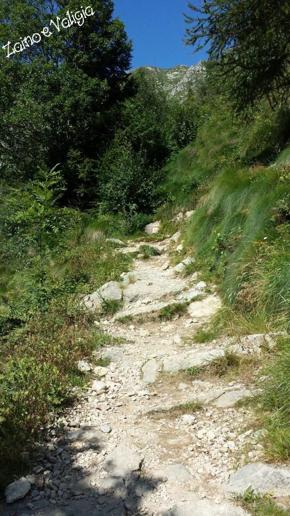 sentiero lago della vecchia