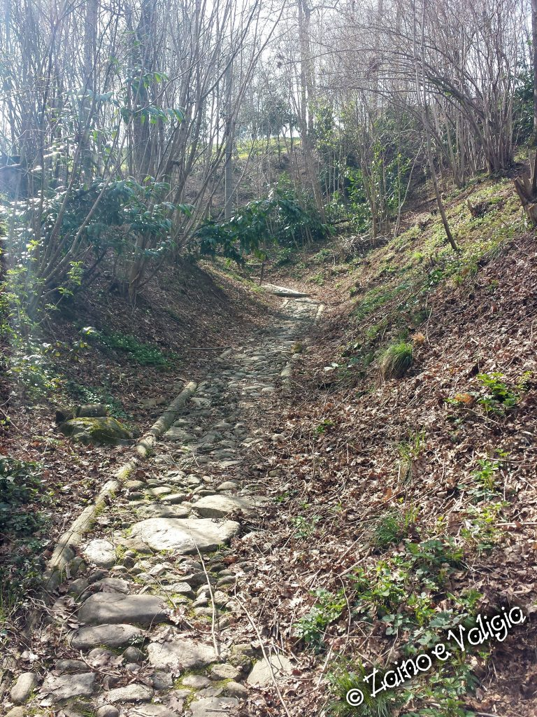 sentiero_parco_bellone
