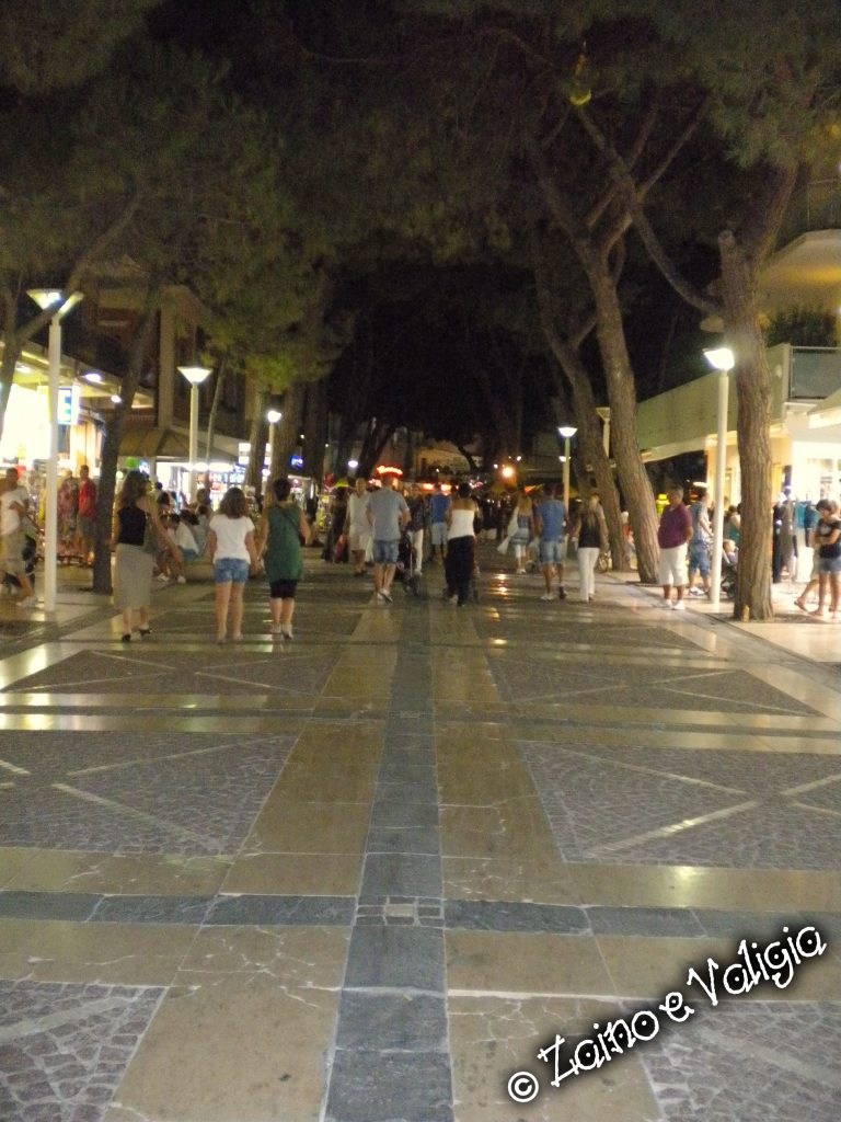 cattolica by night