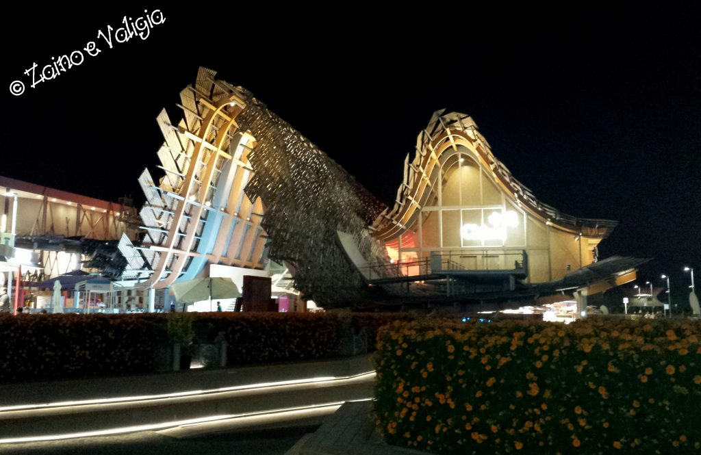 cina expo by night
