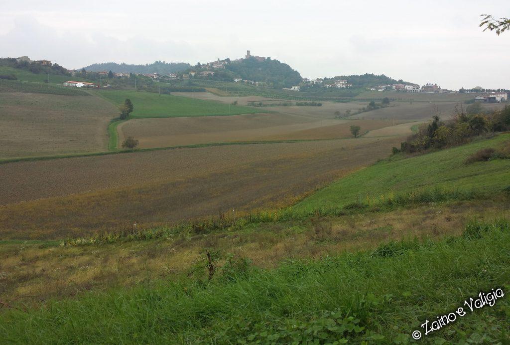 colline monferrato