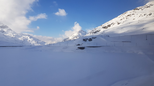 trenino rosso bernina neve