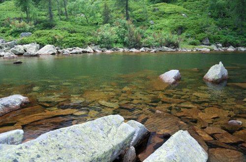 lago delle bose