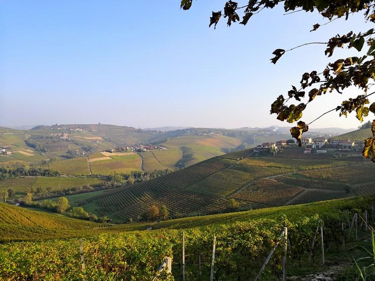 Itinerario di gusto fra Langhe e Roero