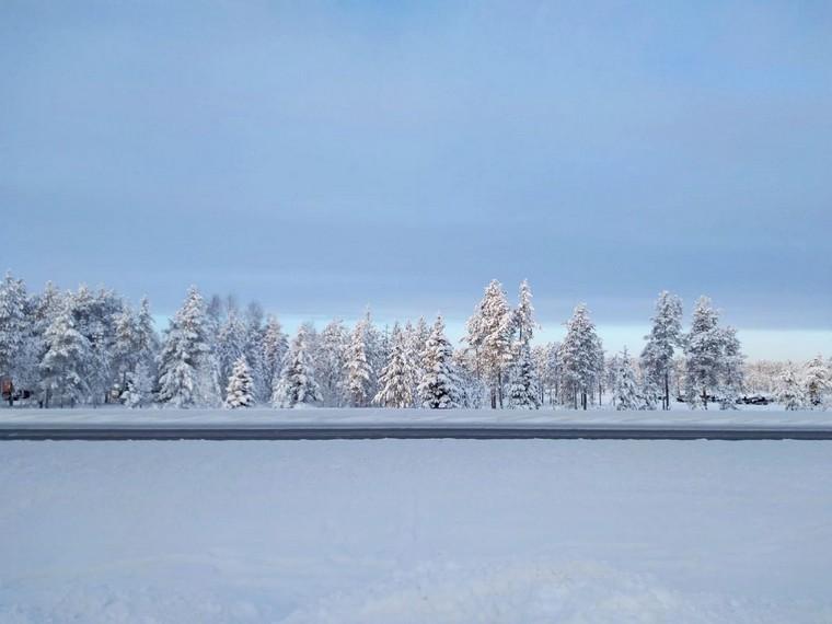 lapponia inverno