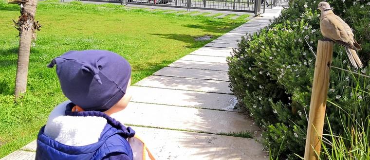 bambini scoperta viaggio